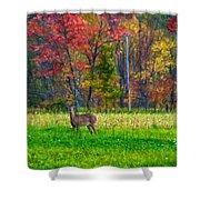 Autumn Doe - Paint Shower Curtain