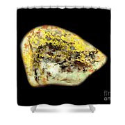 Autumn Dryad Under The Colored Oak Shower Curtain