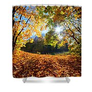Autumn Fall Landscape In Forest Shower Curtain