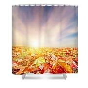 Autumn Fall Landscape Shower Curtain