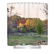 Autumn Forage Before Winter's Arrival Shower Curtain