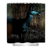 Autumn Forest Life  Shower Curtain