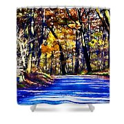Autumn Forest Road V6 Shower Curtain