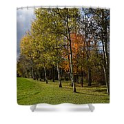 Autumn Forests And Fields Shower Curtain
