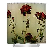 Autumn Fresco Shower Curtain