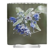 Autumn Frost Shower Curtain