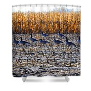 Autumn Geometry By Jrr Shower Curtain