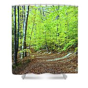 Autumn Gold 3 Shower Curtain