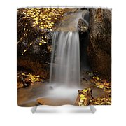 Autumn Gold And Waterfall Shower Curtain by Leland D Howard