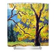 Autumn Gold Yosemite Valley Shower Curtain