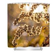 Autumn Goldenrod  Shower Curtain