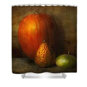 Autumn - Gourd - Melon Family  Shower Curtain by Mike Savad