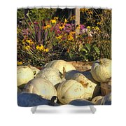 Autumn Gourds Shower Curtain