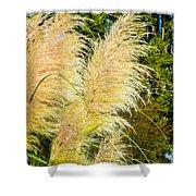 Autumn Grass Shower Curtain