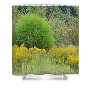 Autumn Grasslands Shower Curtain