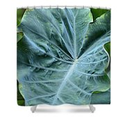 Autumn Green Shower Curtain