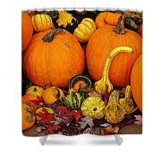 Autumn Harvest 5 Shower Curtain