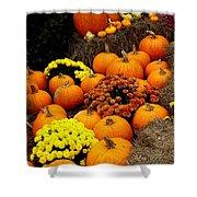 Autumn Harvest 6 Shower Curtain