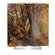 Autumn Hideaway Shower Curtain