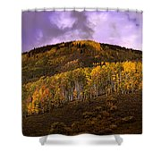 Autumn Hillside Shower Curtain