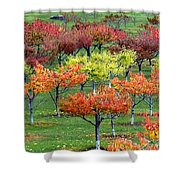 Autumn Hillside Orchard Shower Curtain