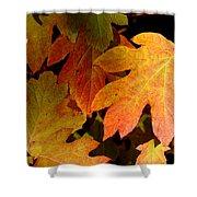 Autumn Hues Shower Curtain