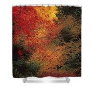Autumn Impression Shower Curtain