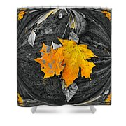 Autumn In Color Shower Curtain