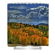 Autumn In Colorado Shower Curtain