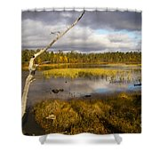 Autumn In Finland Near Inari Shower Curtain