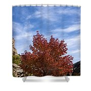 Autumn In Glenwood Canyon - Colorado Shower Curtain