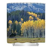 1m9359-autumn In Jackson Hole Ranch Country Shower Curtain