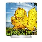 Autumn In Lyme Regis Shower Curtain