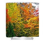 Autumn In Southwest Michigan Shower Curtain