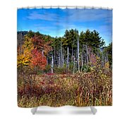 Autumn In The Adirondacks Shower Curtain by David Patterson