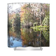 Autumn In A Swamp Shower Curtain