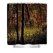 Autumn In Vail - Colorado Shower Curtain