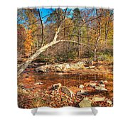 Autumn In Virginia Shower Curtain