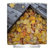 Autumn Incoming Shower Curtain