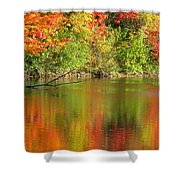 Autumn Iridescence Shower Curtain