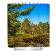 Autumn Lake 4 Shower Curtain