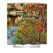 Autumn Lake And Swan Shower Curtain