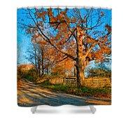 Autumn Lane Mpasto Shower Curtain