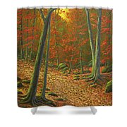 Autumn Leaf Litter Shower Curtain