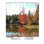 Autumn Leaning Tree Shower Curtain