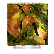 Autumn Leaves 91 Shower Curtain