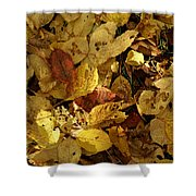 Autumn Leaves 94 Shower Curtain