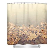 Autumn Leaves Floating In The Fog Shower Curtain