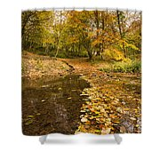Autumn Leaves In A Burn Shower Curtain