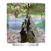 Autumn Leaves In Summer Shower Curtain